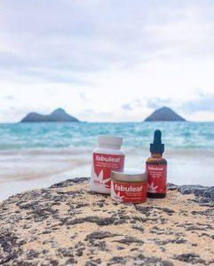 fabuleaf full spectrum hemp flower cbd products on a rock near a beach