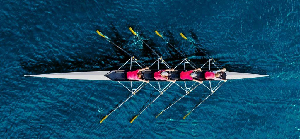 Rowers from Above | What is Entourage Effect Fabuleaf