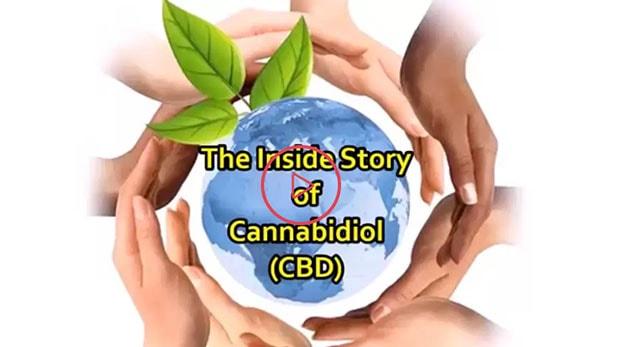 The Inside Story of Cannabidiol (CBD) Video | fabuleaf